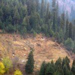 Deforestation Image ID: 115995103 (L) Image credit: max5128 / 123rf. Land diversion article illustration. Illustration of land degradation.